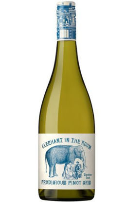 Picture of Elephant In Room Pinot Gris Bottle