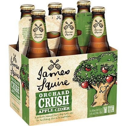 Picture of James Squire Cloudy Apple Cider  x 6pk Bottle